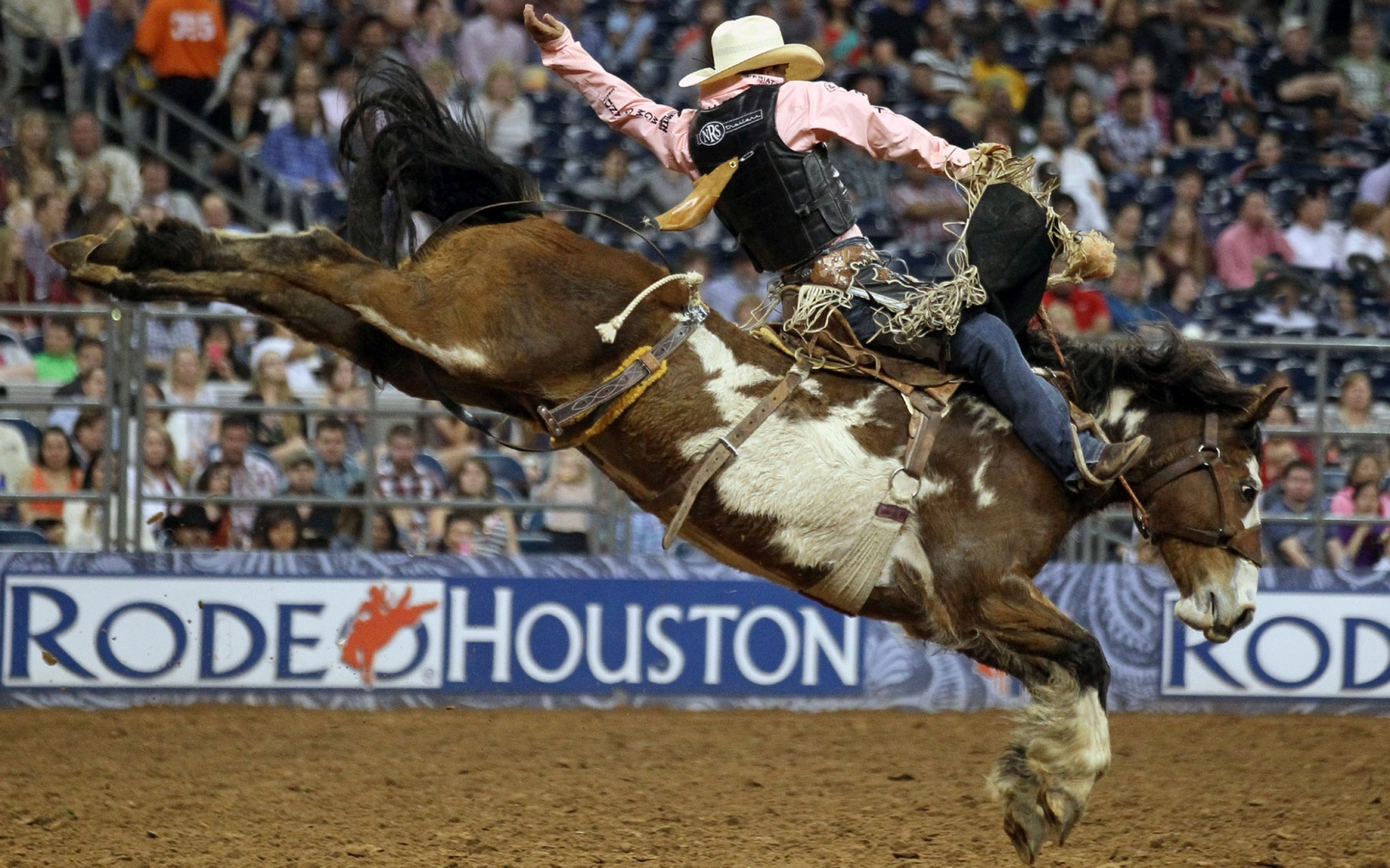 Rodeo Lovers Head For Houston Travel Leisure