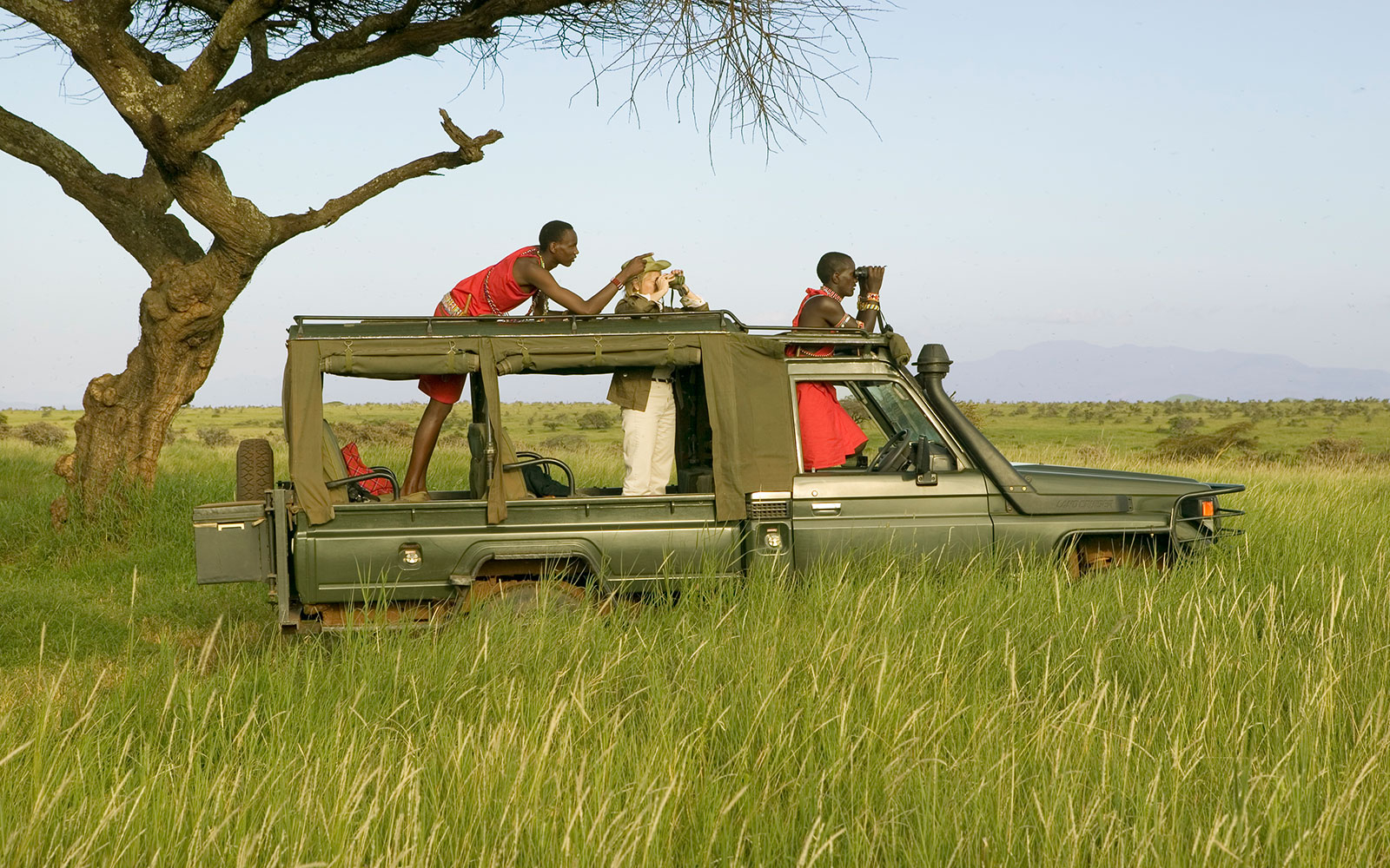 Take A Guided Driving Safari