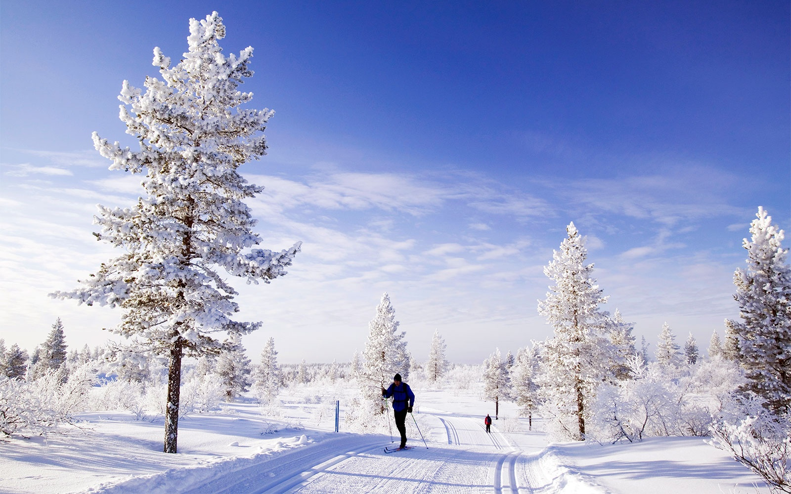 The Best Places to Spend Christmas
