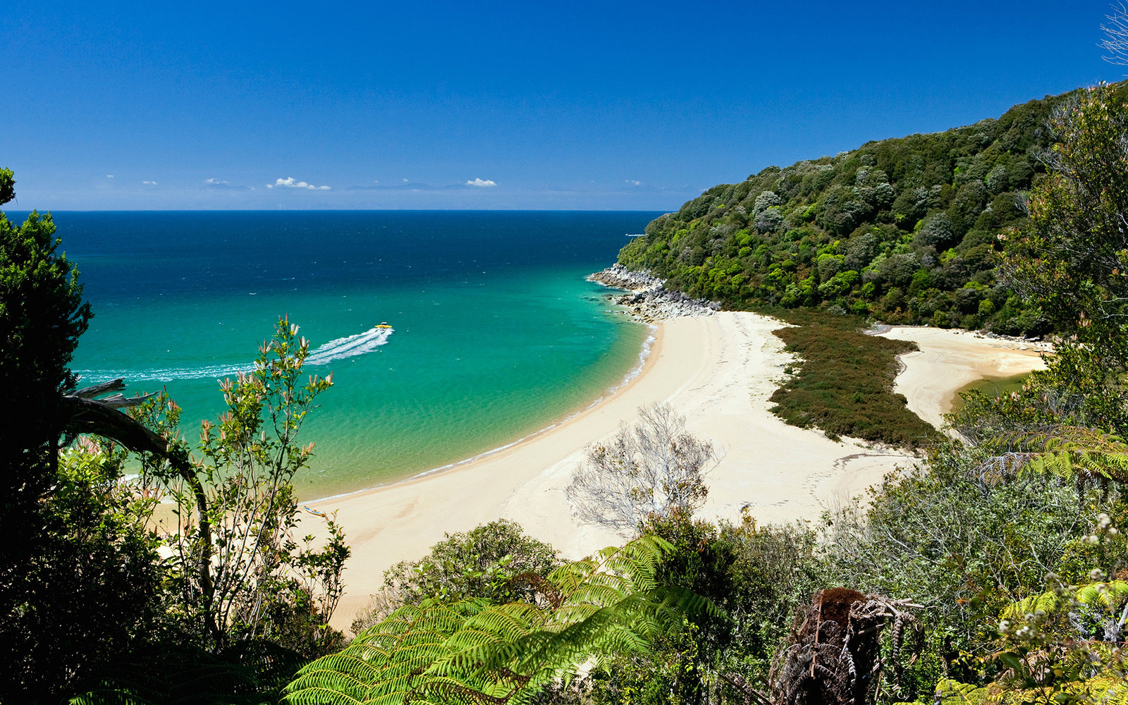 Abel Tasman Beach, New Zealand, NZ