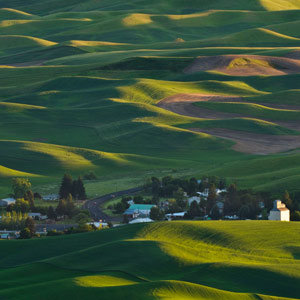 2012-wg-seattle-palouse