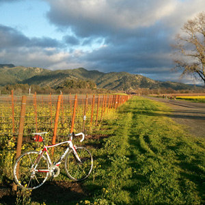 201205-wg-san-francisco-biking-calistoga