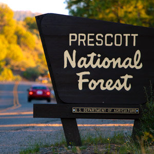 201208-wg-phoenix-prescott-national-forest