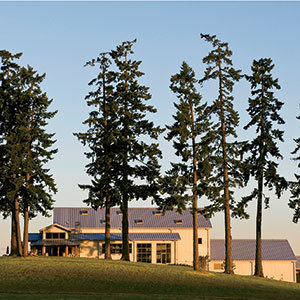 2013-wg-willamette-valley-stoller-estate