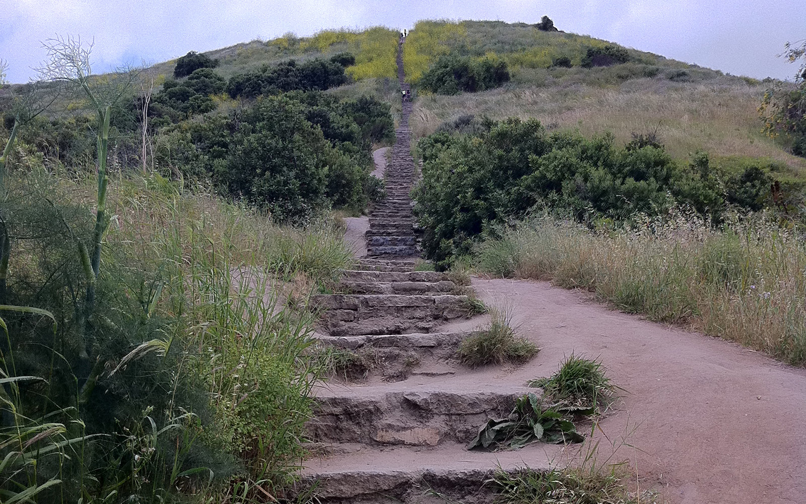 Baldwin Hills  Scenic Overlook stairs