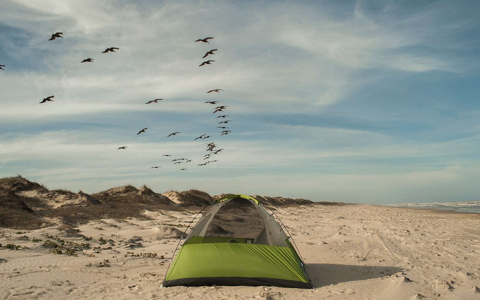 Malaquite Campground, Padre Island National Seashore, Texas