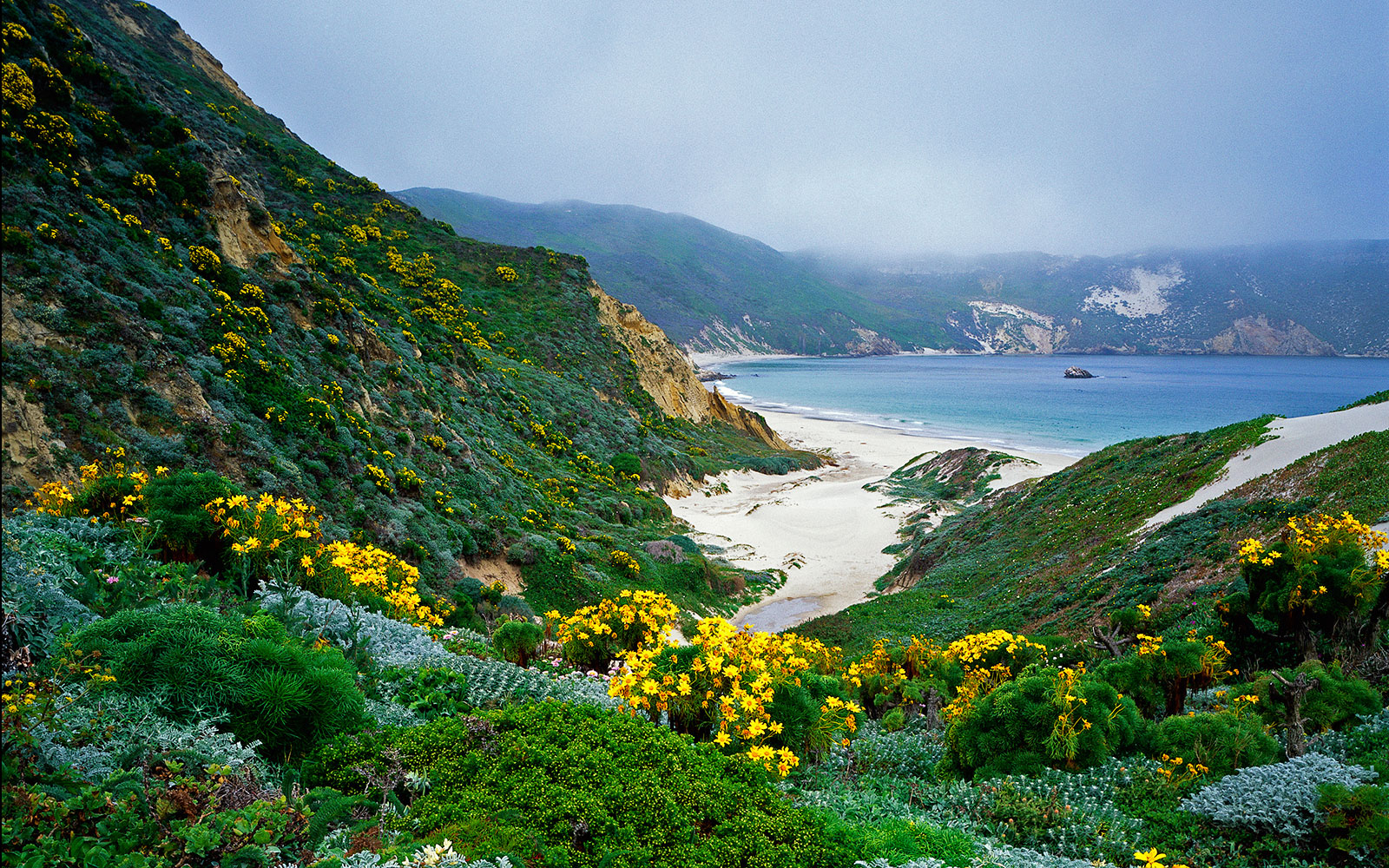 Channel Islands National Park in Channel Islands, California