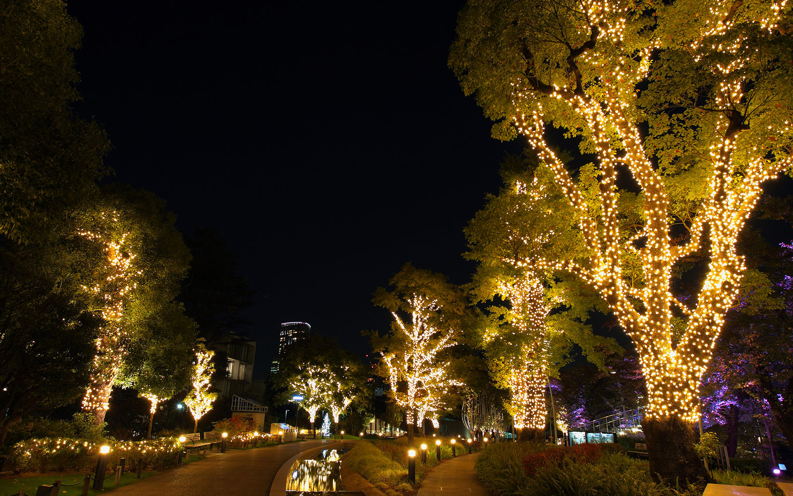 How To Spend Christmas In Tokyo Travel Leisure