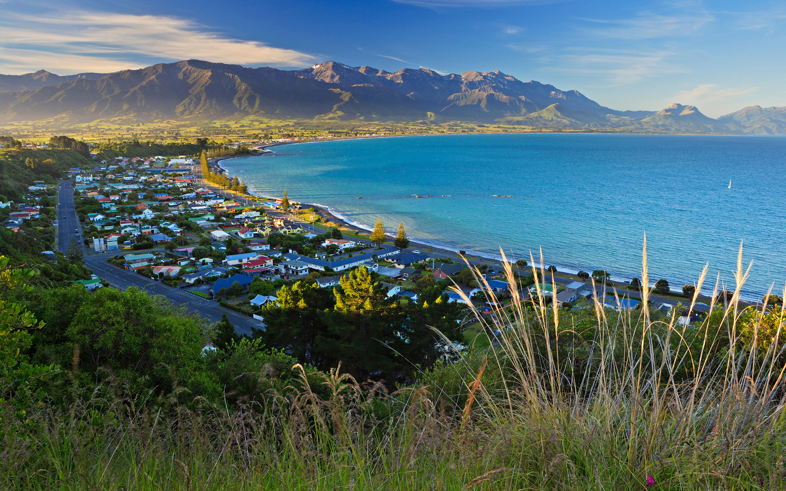 Kaikoura, New Zealand christmas vacation ideas