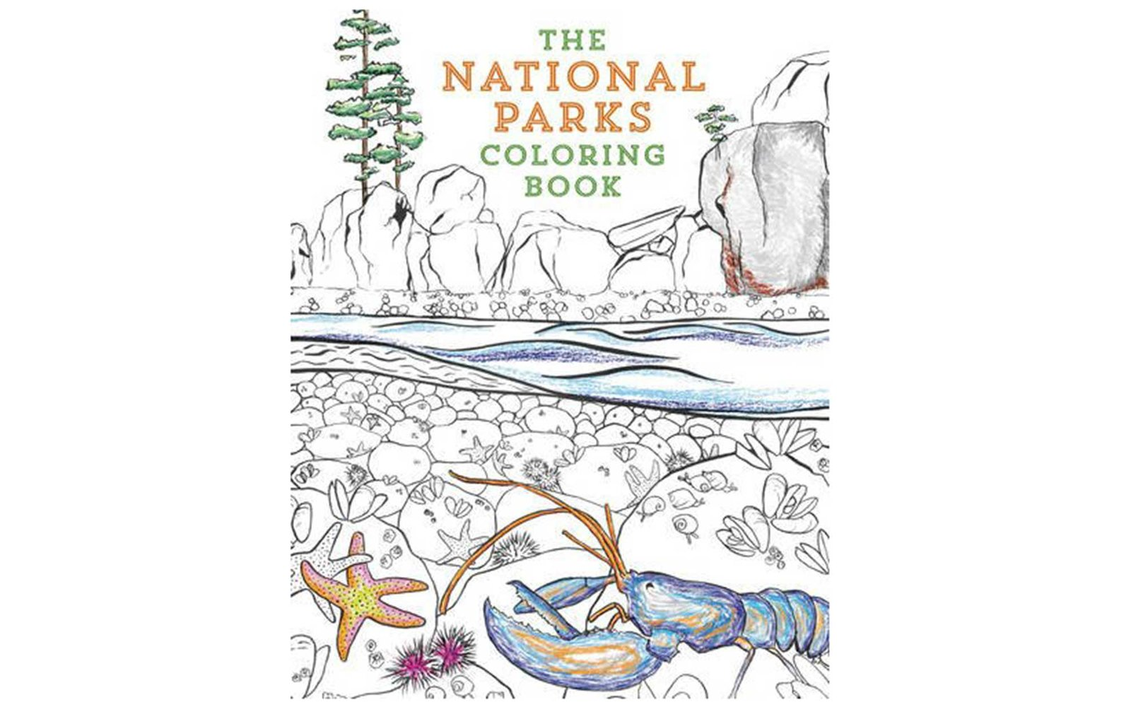 national park coloring book