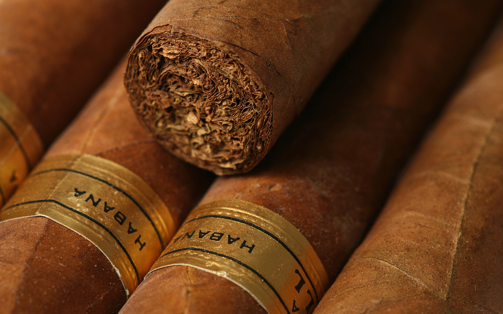 Here's What Could Happen to Cuban Cigar Prices
