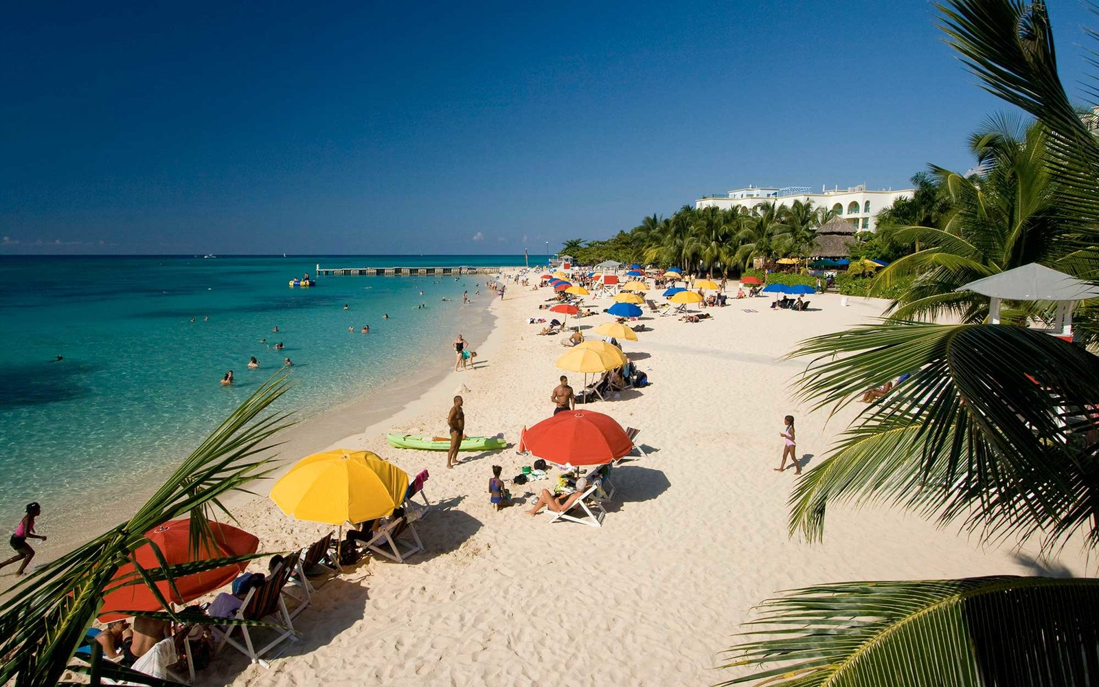 If you haven't been to Jamaica, this is the year to go: