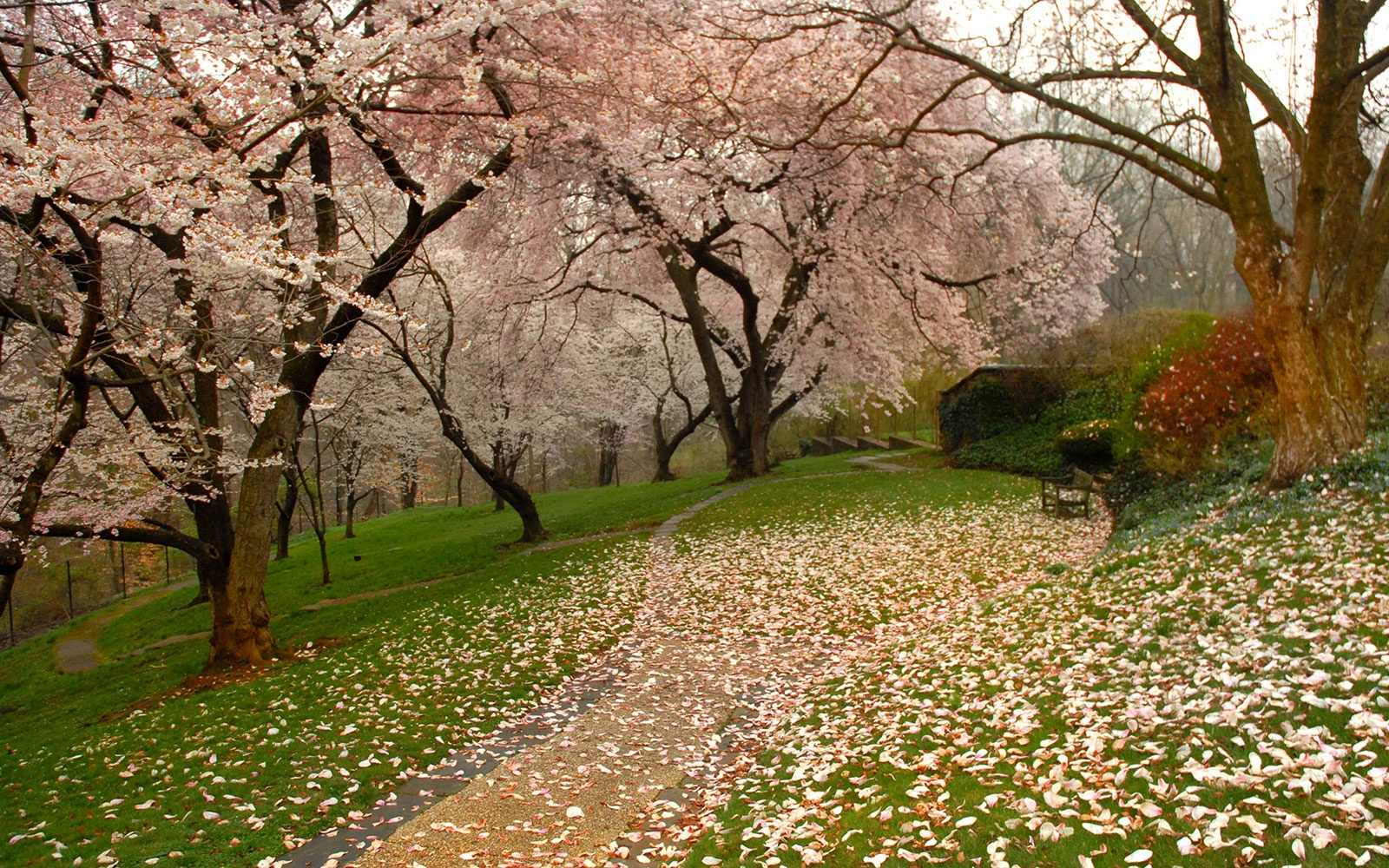 Dumbarton Oaks, Washington, D.C.