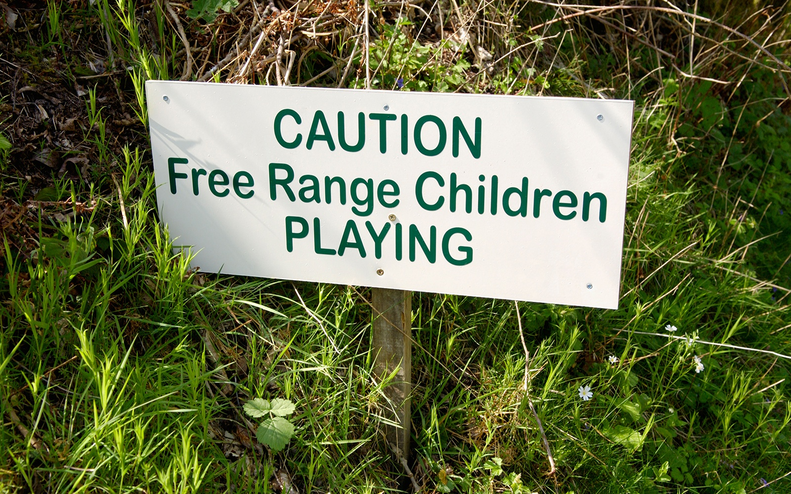 201209-w-funniest-signs-free-range-children