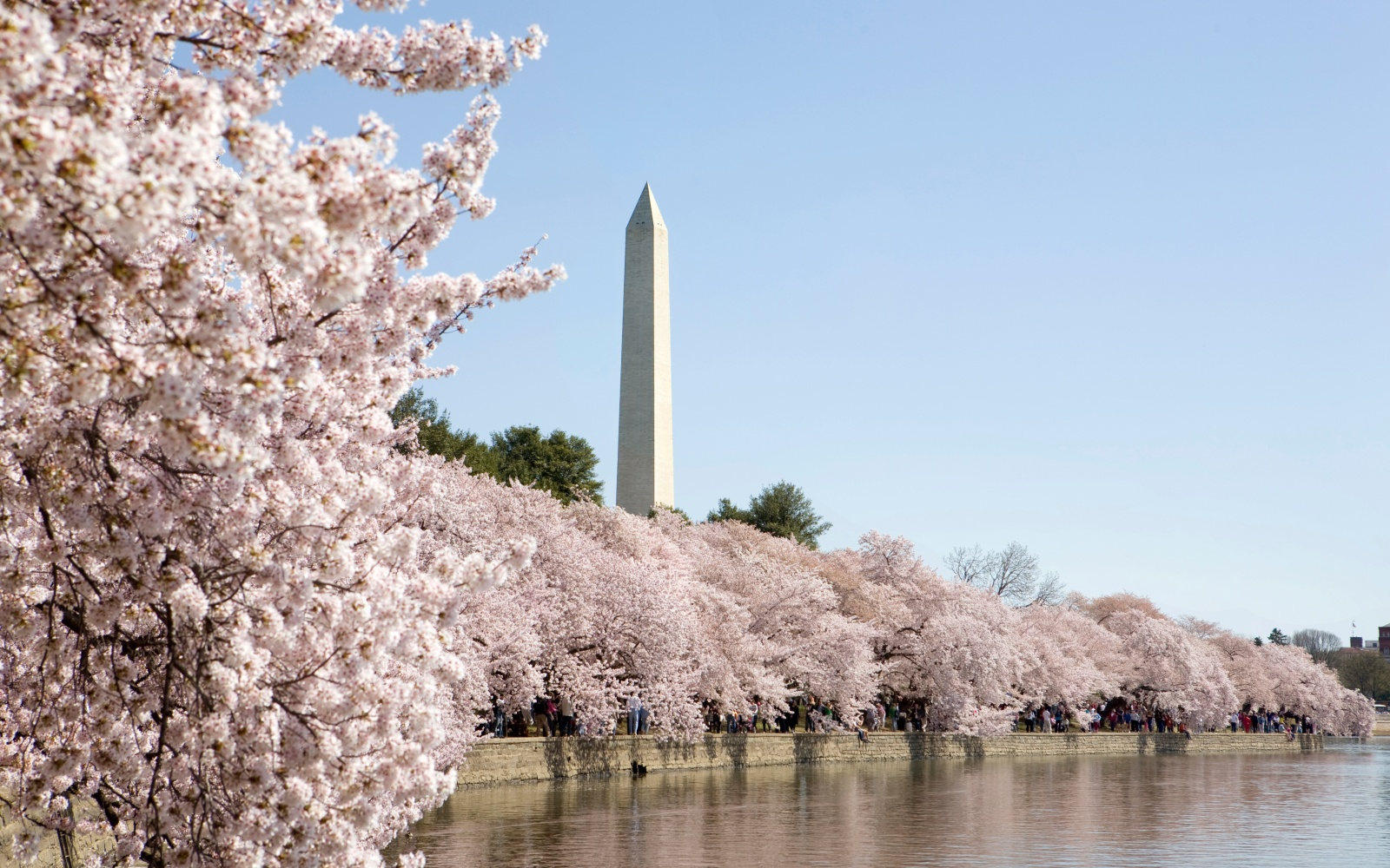 The Perfect Weekend in D.C.: Riverside Parks, Free Museums, and Local Brews