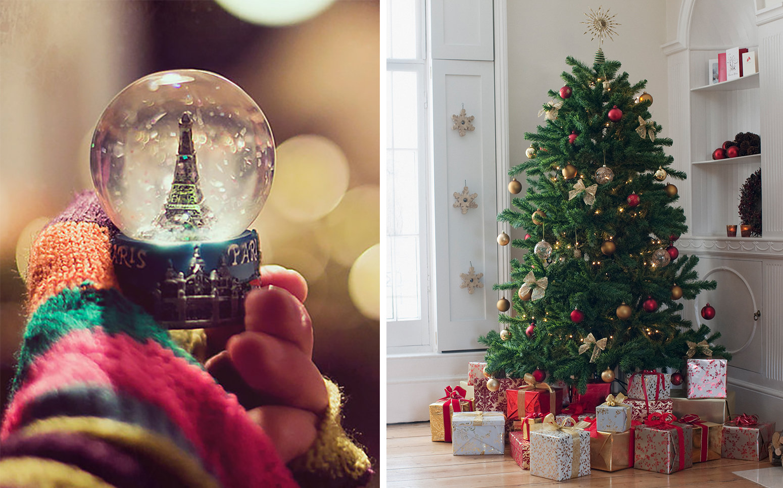 A snow-globe and a Christmas tree