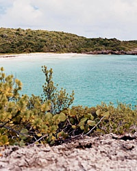 200402_vieques_200
