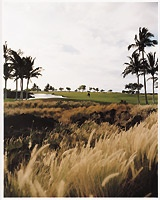 2003_golfmig_hawaii