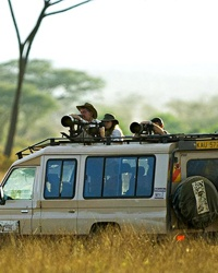 200804-a-affordable-safaris