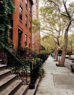 A Tree Grows in Brooklyn, many of them, in fact; those seen here are on Clinton Street, which runs through Brooklyn Heights, Cobble Hill, and Carroll Gardens.