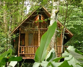 treehouse-hotel-200806-ss