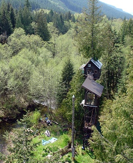 Washington Treehouse Hotel