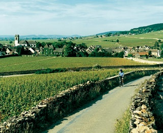 Biking in Burgundy with Butterfield & Robinson