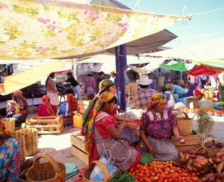 Mexico, Central & South America: Oaxaca and Puebla with CUESA