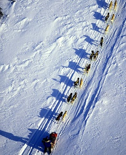 Iditarod Flight, Alaska