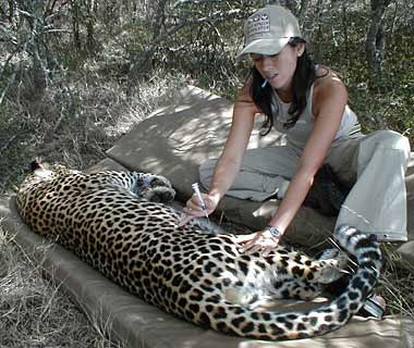 South African wildlife preservation, Eastern Cape Worldwide Experience