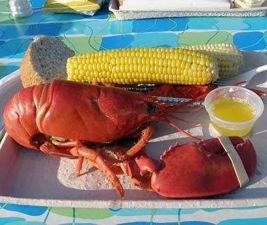Waterman's Beach Lobster, South Thomaston