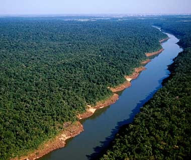 Upper Paraná Atlantic Forest, Argentina, Paraguay, and Brazil