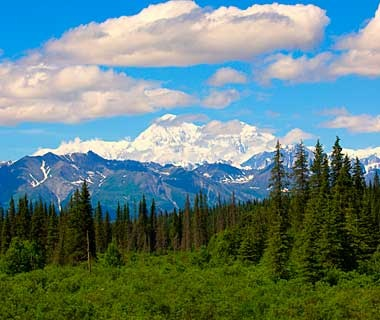 Denali National Park and Beyond, Alaska and Canada