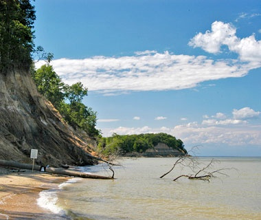 Calvert Cliffs State Park Md