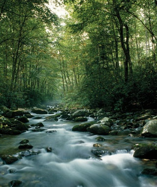National Park: Great Smoky Mountains, North Carolina and Tennessee