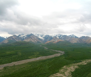 Back to Nature: Denali National Park, AK