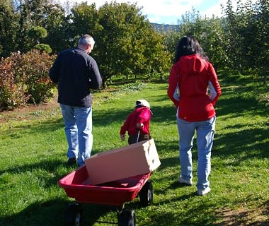 Kiyokawa Family Orchards, Parkdale,OR