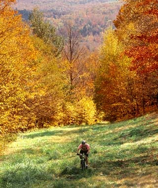 Cycling Through Fall Foliage in Vermont