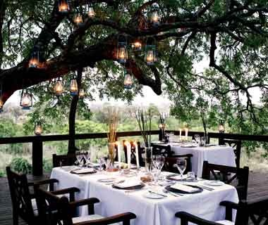#34Londolozi Private Game Reserve (92.68)Kruger National Park Area, South Africa