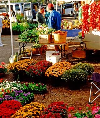 Santa Fe Farmers' Market, New Mexico