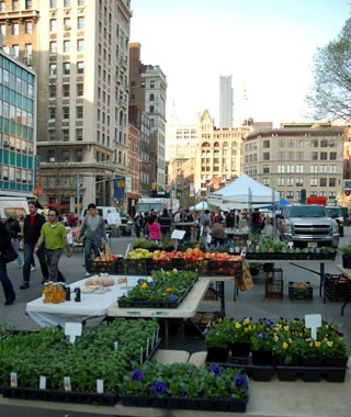 Union Square Greenmarket, New York
