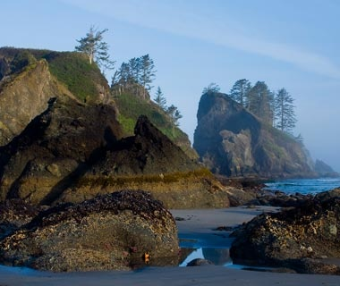 Shi Shi Beach, Olympic National Park, WA