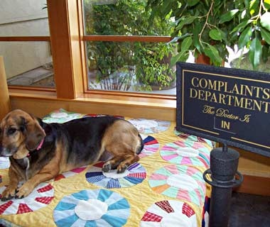 201010-w-funnysigns-complaints