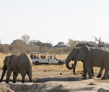 Botswana: Wild River and Wildlife