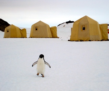 Antarctica: The Center of the Bottom of the World