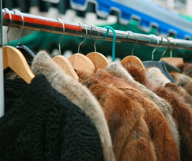 Clothing Containing Dog or Cat Fur