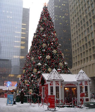 Daley Plaza Christmas Tree, Chicago