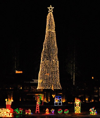 The Tree At Coeur D Alene Resort Idaho