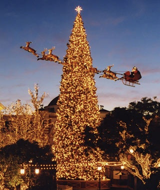 America's Tallest Christmas Trees | Travel + Leisure