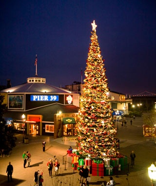 San Francisco's Pier 39 Holiday Tree